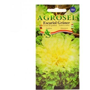 Seminte Cicoare de gradina Escarilo Gruner Agrosel