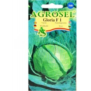 Seminte Varza Gloria F1 Agrosel