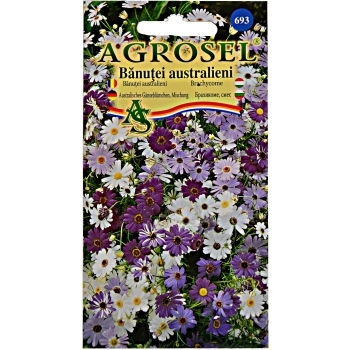 Seminte flori Banutei australieni(1.5 gr) Agrosel