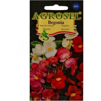 Seminte flori Begonia melanj Agrosel