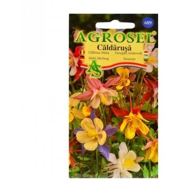 Seminte flori Caldarusa Agrosel