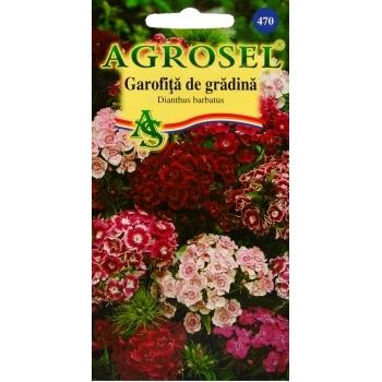 Seminte flori Garofita de gradina inalt melanj(1 gr) Agrosel