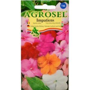 Seminte flori Impatiens melanj(0.10 gr) Agrosel