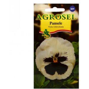Seminte flori Pansele alb Agrosel