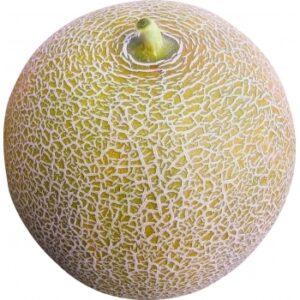 Seminte pepene galben Citirex F1(500 sem) Clause