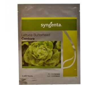Seminte salata Centore(5000 sem) Syngenta