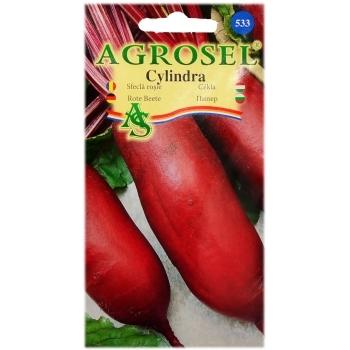 Seminte sfecla rosie Cylindra(5 gr) Agrosel