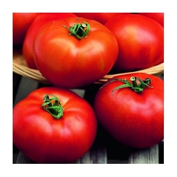 Seminte tomate Hector F1(1000 sem) Clause